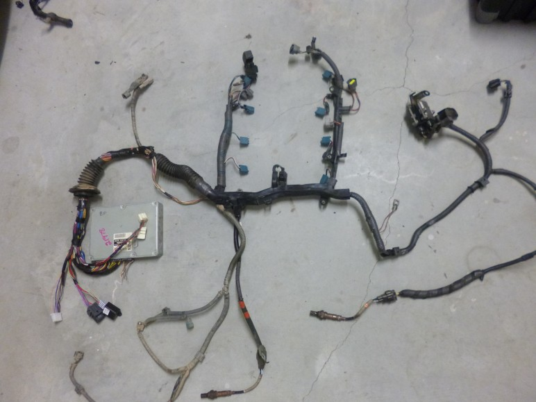 P10000971 772x579 1uz plug in to 2001 toyota hilux sideshows performance wiring 1uzfe wiring harness at bayanpartner.co